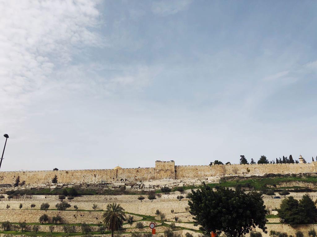 ewmt-israel-wall-gallery